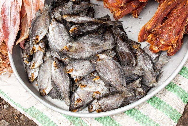 Aziatische vissen royalty-vrije stock afbeelding