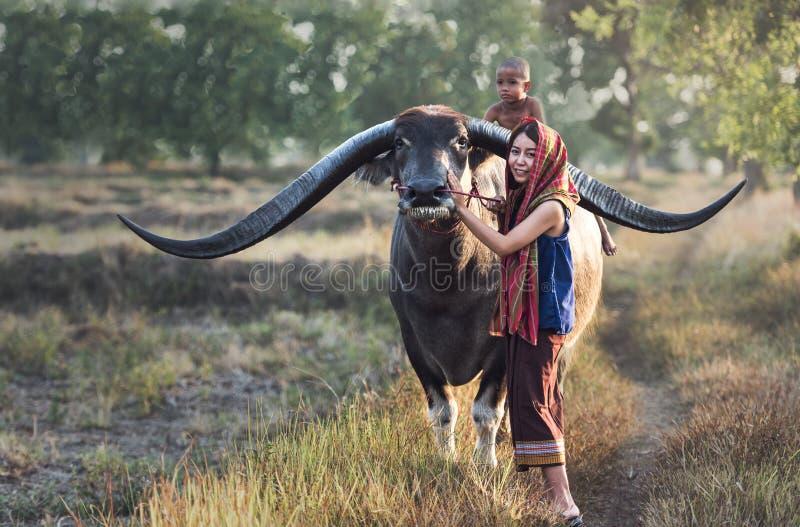 Aziatische vrouwen (Thaise) landbouwer met een buffel stock afbeeldingen