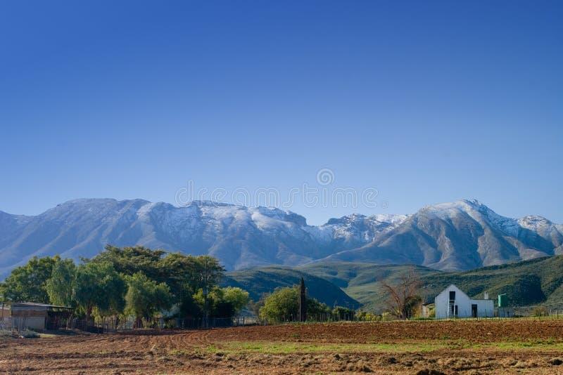 Download Azienda agricola #1 immagine stock. Immagine di verde, coperto - 219269