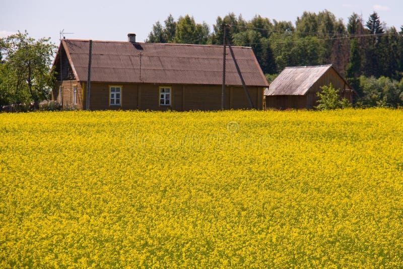 Azienda agricola immagine stock libera da diritti