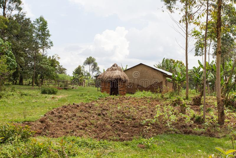 Azienda agricola abbandonata nella foresta Kenya, Africa di Kakamega fotografie stock