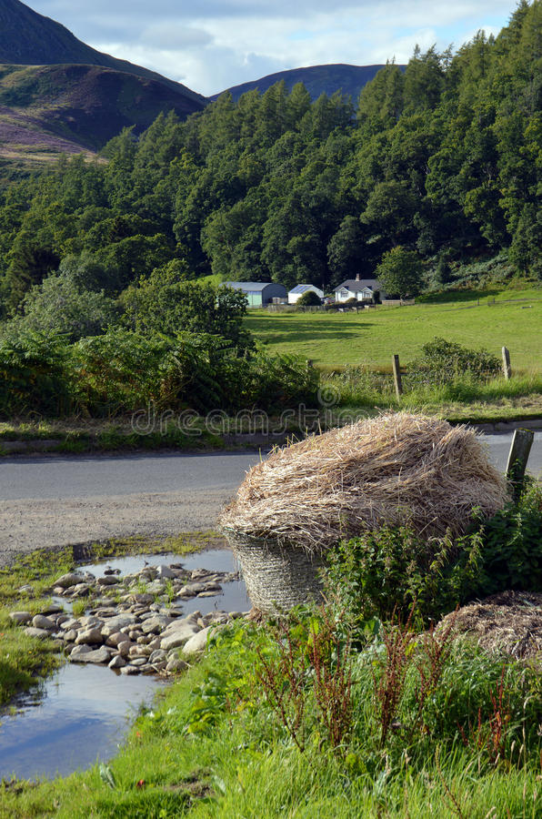 Azienda agricola in altopiano Perthshire, Scozia immagine stock