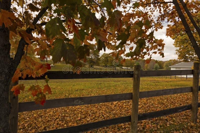 Azienda agricola in autunno immagine stock