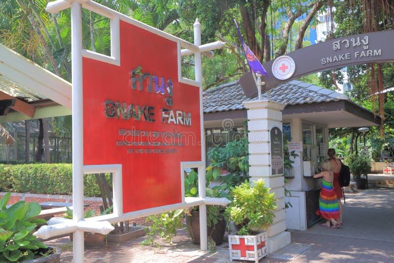 Azienda agricola Bangkok Tailandia del serpente immagine stock libera da diritti