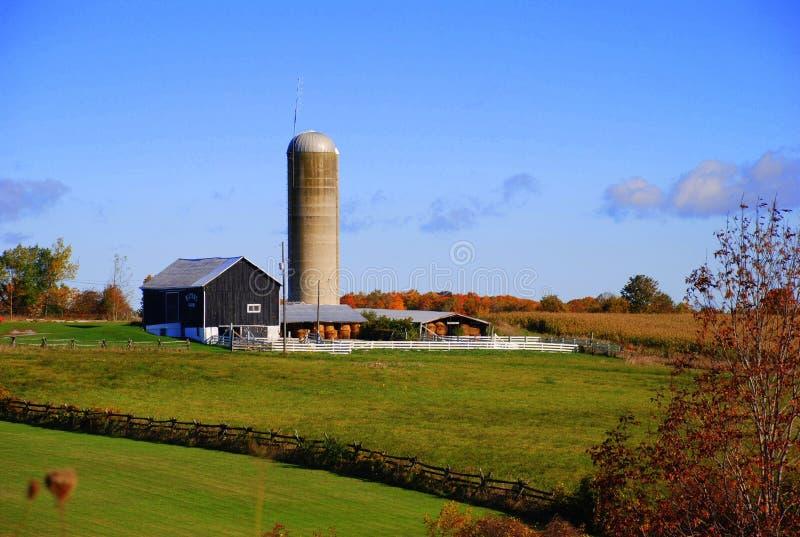 Azienda agricola in campagna canadese fotografia stock libera da diritti
