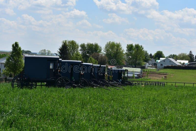 Azienda agricola con i carrozzini ed i carretti di Amish parcheggiati fotografia stock libera da diritti