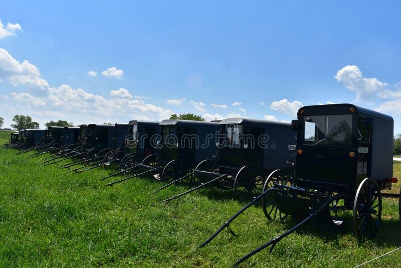 Azienda agricola con un mazzo di carrozzini parcheggiati di Amish in un campo fotografia stock