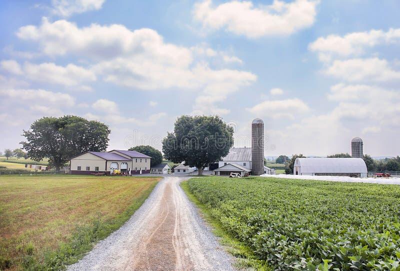 Azienda agricola dei Amish immagine stock libera da diritti