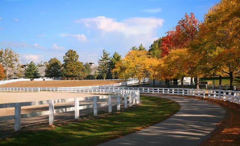 Azienda agricola del cavallo del Kentucky fotografia stock