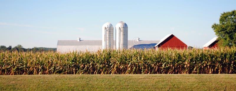 Azienda agricola del Maryland fotografia stock libera da diritti