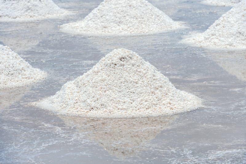 Azienda agricola del sale da naturale fotografie stock