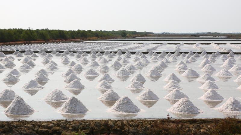 Azienda agricola del sale marino in Tailandia immagine stock libera da diritti