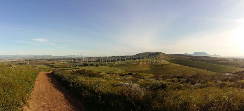 Azienda agricola del vino/montagna della Tabella fotografia stock