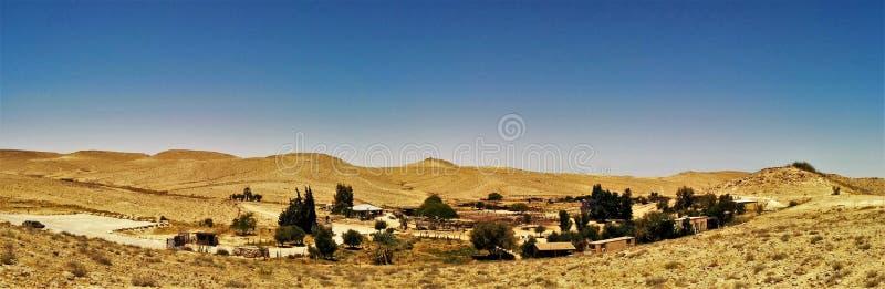 Azienda agricola dell'alpaga nella cresta del cratere di Ramon, Israele fotografia stock