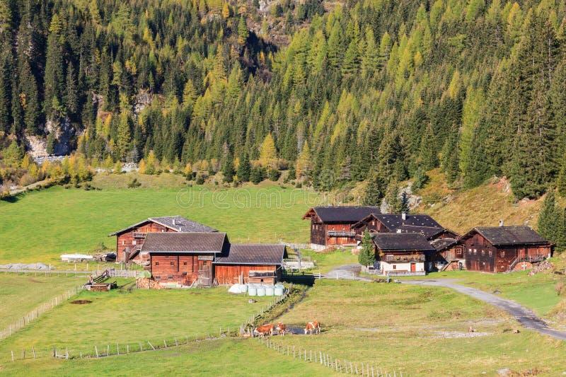 Azienda agricola dell'alpe fotografia stock libera da diritti
