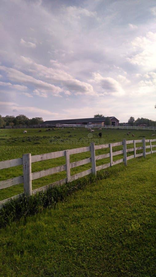 Azienda agricola dell'Ohio immagine stock