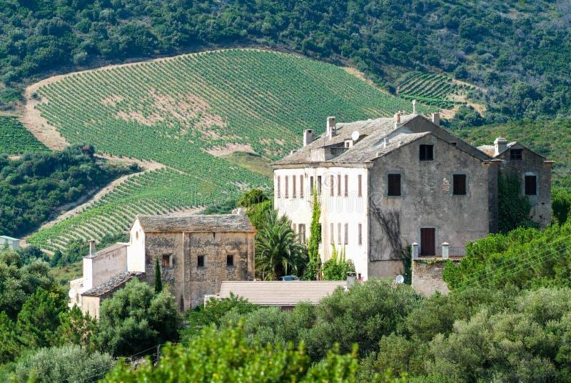 Azienda agricola della cantina a Patrimonio sull'isola di Corsica fotografia stock