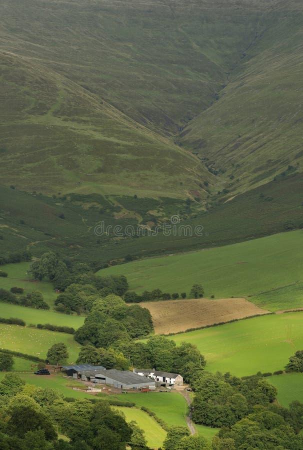 Azienda agricola della collina di Lingua gallese fotografie stock