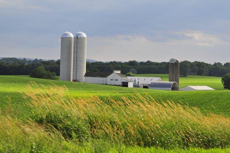 Azienda agricola della contea di Lancaster fotografia stock libera da diritti