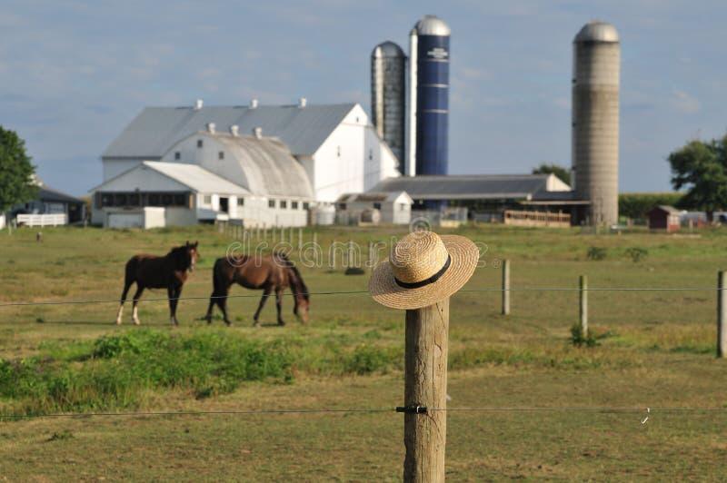 Azienda agricola della contea di Lancaster Amish fotografia stock libera da diritti