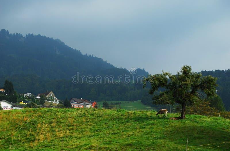 Azienda agricola della montagna fotografia stock