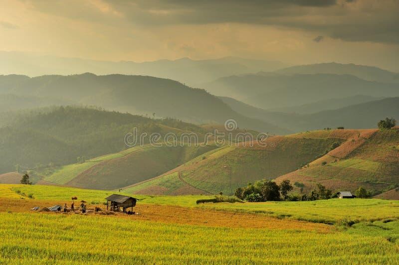 Azienda agricola della montagna immagine stock