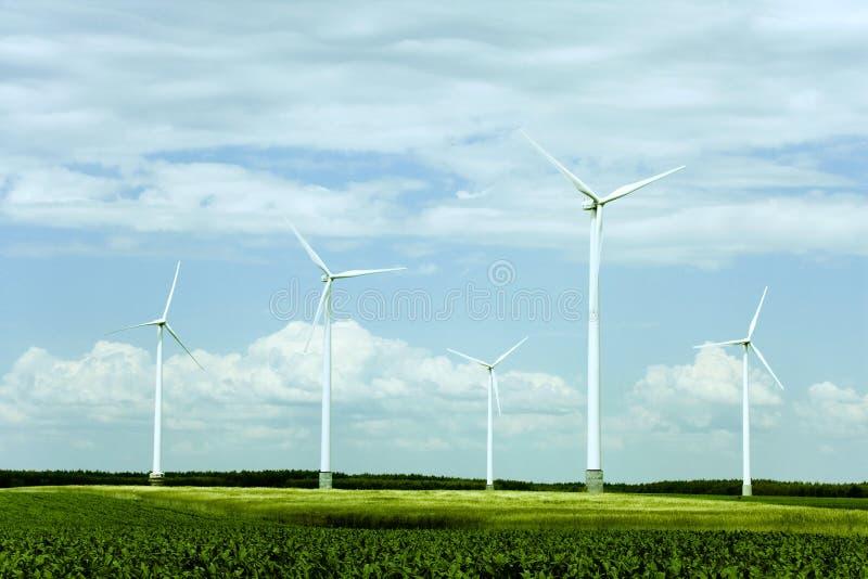 Azienda agricola delle turbine di vento immagine stock libera da diritti