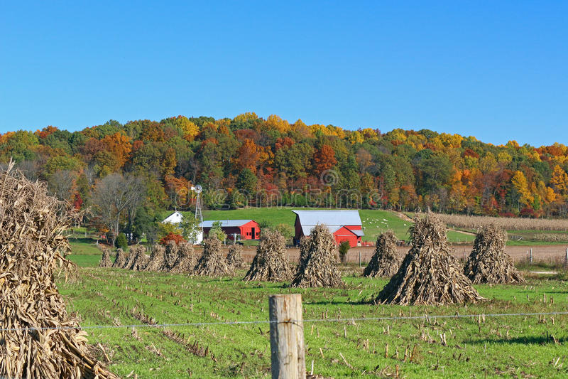 Azienda agricola di Amish in autunno fotografie stock