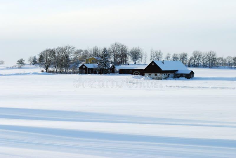 Azienda agricola di inverno fotografie stock libere da diritti