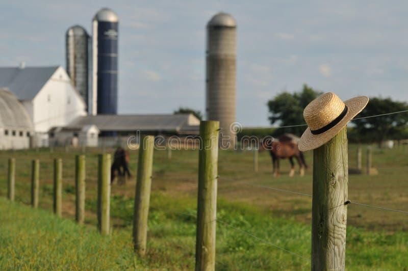 Azienda agricola di Lancaster Amish con il cappello di paglia fotografia stock