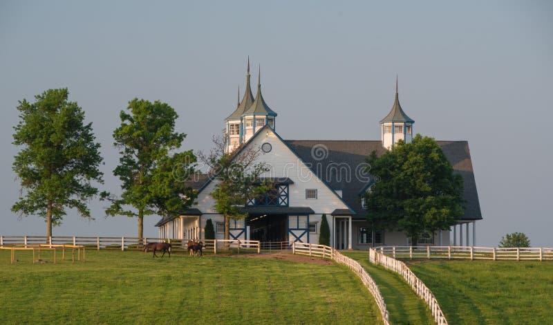 Azienda agricola di Manchester a Lexington Kentucky ad alba immagine stock