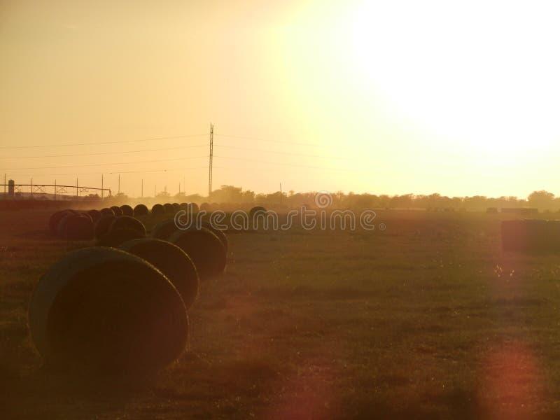 Azienda agricola di sera fotografia stock libera da diritti