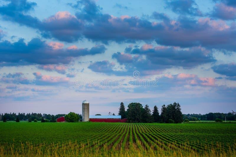 Azienda agricola di Southwestrn Ontario al tramonto immagini stock libere da diritti