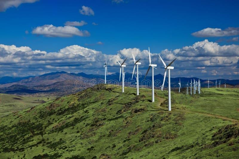 Azienda agricola di vento del pendio di collina fotografia stock libera da diritti