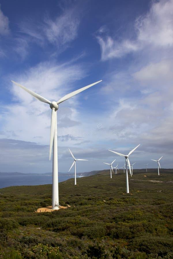Azienda agricola di vento di Albany fotografia stock