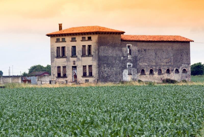 Azienda agricola e file al tramonto immagini stock libere da diritti