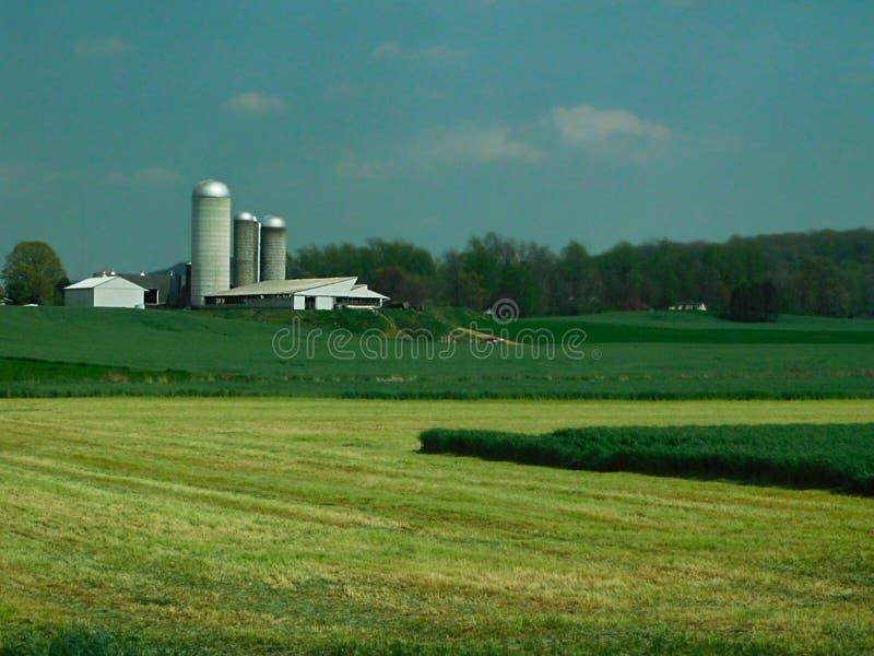 Azienda agricola, fattoria, silos ed altre fuori costruzioni, la contea di Lancaster, Pensilvania immagini stock libere da diritti