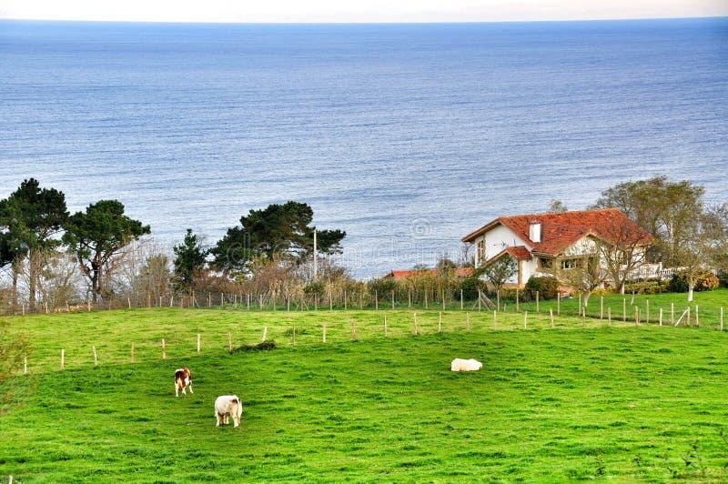 Azienda agricola nel Golfo di Biscaglia San Sebastian spain fotografia stock libera da diritti