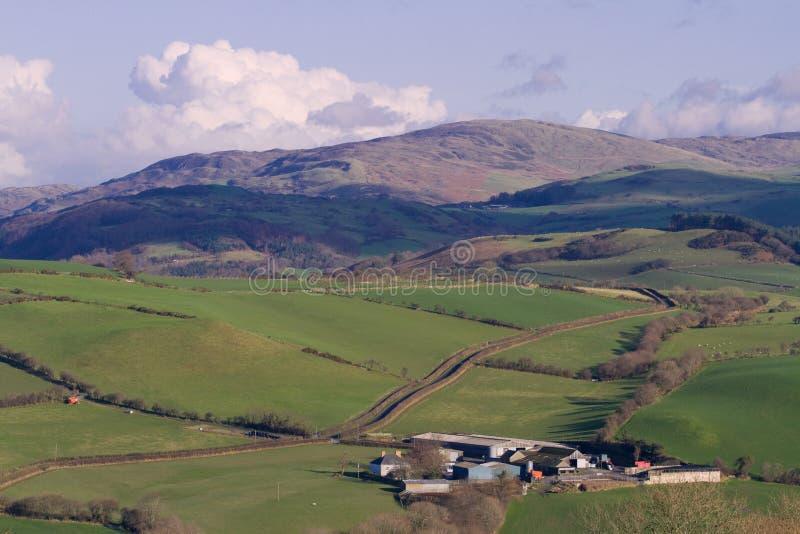 Azienda agricola nella campagna di Lingua gallese immagine stock