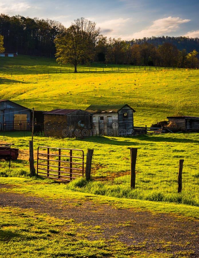 Azienda agricola nello Shenandoah Valley, la Virginia immagine stock libera da diritti