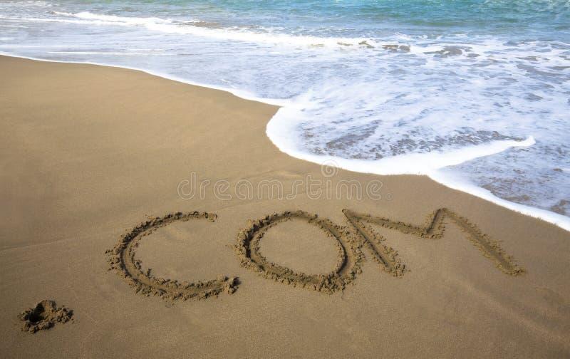 Azienda del Internet ed onda di oceano fotografia stock
