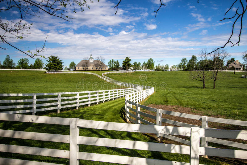 Aziende agricole di Donamire a Lexington Kentucky fotografie stock libere da diritti