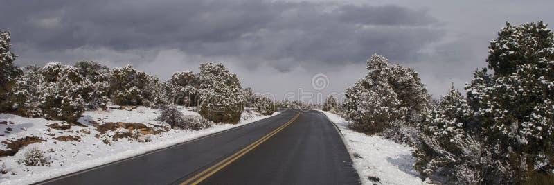Azionamento croccante di inverno fotografia stock libera da diritti