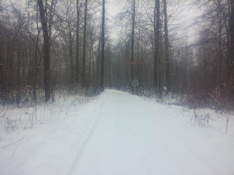 Azionamento Ohio di Snowy immagini stock