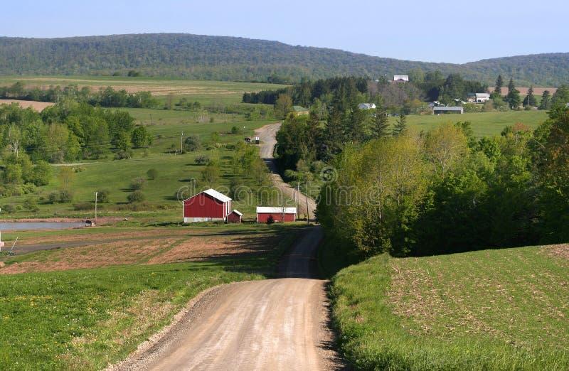 Azionamento rurale immagini stock