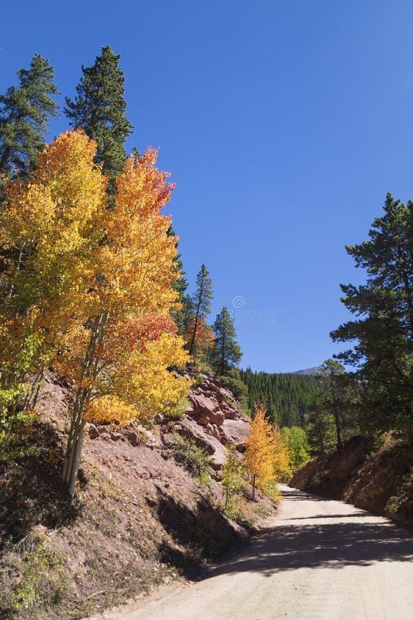Azionamento scenico della montagna attraverso le tremule variopinte fotografie stock libere da diritti