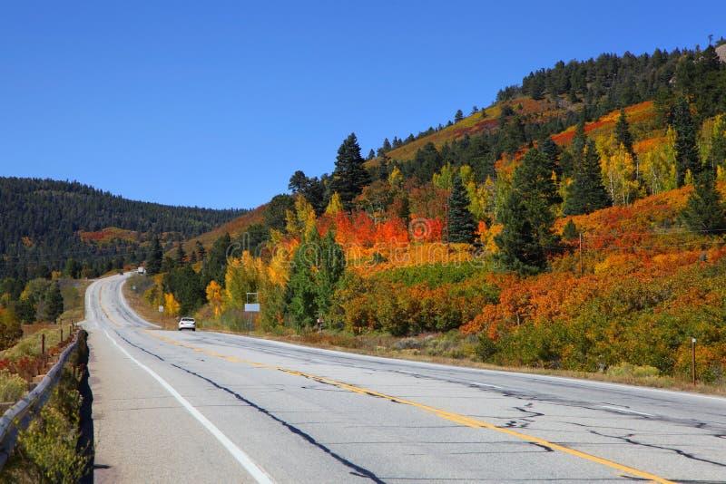 Azionamento scenico di autunno immagini stock