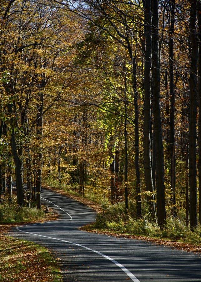 Azionamento unidirezionale di autunno fotografie stock libere da diritti
