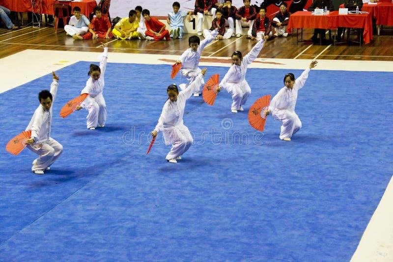 Azione della squadra di Wushu fotografie stock libere da diritti