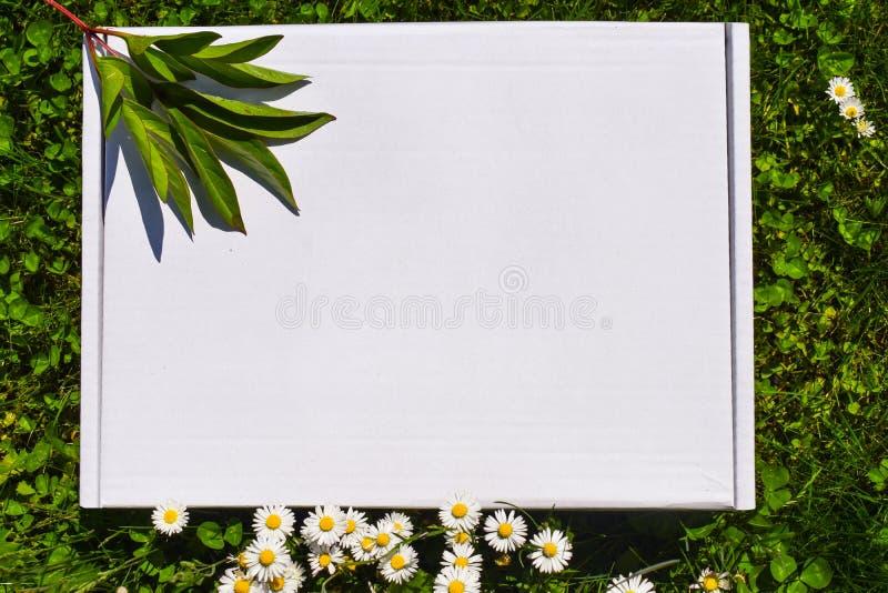 Azione disegnate photograpjy, archivio digitale del modello Quadrato in bianco per l'opera d'arte con il fondo dei fiori bianchi  fotografia stock libera da diritti